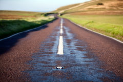 Median strip of a country road Stock Image