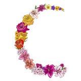 A medias alrededor del marco floral de las flores del colorfull Rosas, lirios, pensamientos, polemonios Ilustración del vector libre illustration
