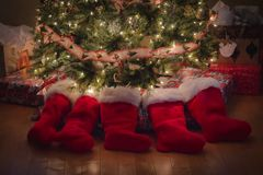 Medias de la Navidad alrededor del árbol imagen de archivo
