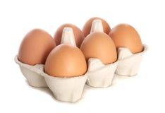 Medias docenas recorte fresco de los huevos Foto de archivo