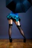 Medias negras del Fishnet de la ropa interior de las piernas atractivas de la mujer Imagenes de archivo