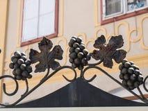 Medias Rumunia, Czerwiec, - 2017: Medias miasta symbol: winogrona Tra Obrazy Stock