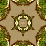 Mediaval star in gold and green or design template. Abstract color modern geometric background. Modern design. Abstract art backgr. Mediaval star in gold and stock photo