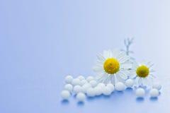 Medicación homeopática Imagen de archivo libre de regalías
