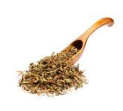 Medicago seco de la alfalfa sativa en la cuchara de madera Fotografía de archivo