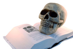 Medical. Book and a skull model for studying medicine Stock Photo