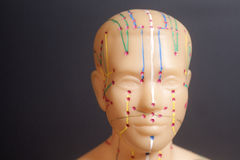 Medical acupuncture model of human head on black Stock Photos