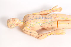 Medical acupuncture model of human Royalty Free Stock Image