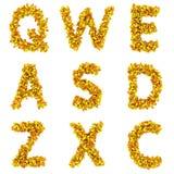 Medical alphabet Royalty Free Stock Photo
