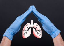 Medical assistant holding lungs between hands. Protecting from pulmonary disease on black background royalty free stock image