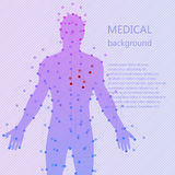Medical background. Human anatomy. Medical background. Abstract model of man with points and lines. Vector background. Human anatomy Stock Images