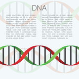 Medical bckground with DNA molecule with place for text.  Royalty Free Stock Images