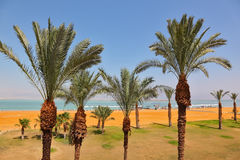 Medical beachl at the Dead Sea Royalty Free Stock Photos