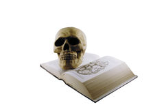 Medical book and skull. Medical book and a skull model for studying medicine Royalty Free Stock Photo