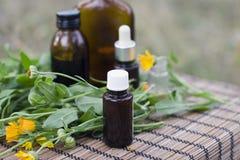 Medical calendula Stock Photo