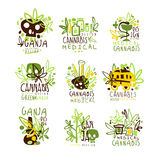 Medical Cannabis Colorful Graphic Design Template Logo Series,Hand Drawn Vector Stencils Stock Photo