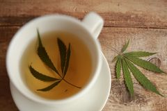 Medical cannabis tea white cup royalty free stock photo