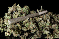 Medical cannabis joint on cannabis buds on black from side. Medical cannabis rolled joint on dried marijuana buds on black background from side stock images
