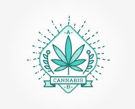 Medical Cannabis Marijuana Sign or Label Template in Vector. Can Stock Image