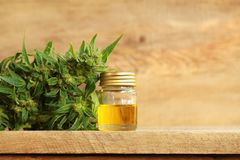 Medical cannabis oil extract and hemp plant. Cannabis oil extract and hemp medical plant Royalty Free Stock Photo