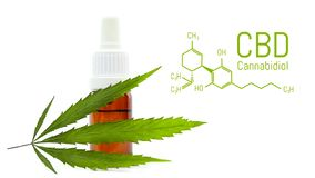 Medical cannabis products isolated over white. CBD oil dropper bottle, green hemp leaf. Medical marijuana concept.  royalty free stock images