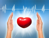 medical and The cares concept, Red Heart in female hand Royalty Free Stock Photography