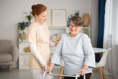 Medical caretaker helping senior woman. Professional medical caretaker in uniform helping smiling senior women with a walker in a living room of private luxury stock photography