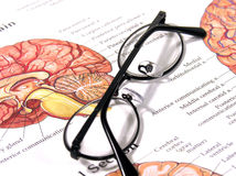 Medical Chart and Glasses Stock Image