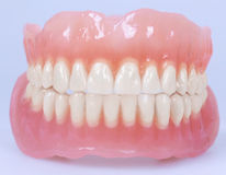 Medical denture jaws Stock Images