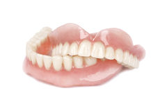 Medical denture Royalty Free Stock Photo