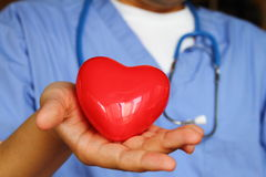 Medical Doctor. Image of medical doctor holding a red heart Stock Images