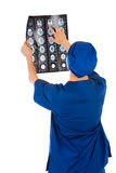 Medical doctor analysing x-ray photography Stock Photography