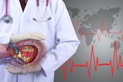 Medical doctor checking your health with heart concept Royalty Free Stock Image
