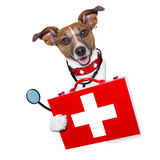 Medical doctor dog. Beside a blank banner stock photos