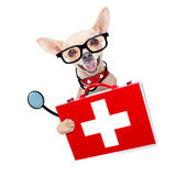 Medical doctor dog. Chihuahua dog as a medical veterinary doctor with stethoscope and first aid kit behind a white and blanc banner ,isolated on white background stock photos