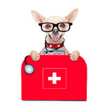 Medical doctor dog. Chihuahua dog as a medical veterinary doctor with stethoscope and first aid kit behind a white and blank banner ,isolated on white background stock photos
