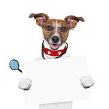 Medical doctor dog. Holding a blank banner royalty free stock photos