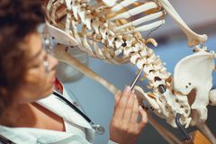 Medical doctor woman teaching anatomy using human skeleton Stock Photography