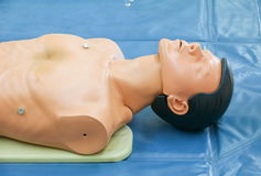 Medical dummy on CPR, in emergency refresher training to assist Royalty Free Stock Photo