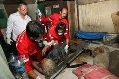 Medical evacuation Royalty Free Stock Image