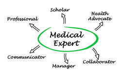 Medical Expert Royalty Free Stock Photo