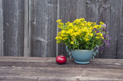 Medical fresh st Johns wort flowers and apple Royalty Free Stock Image