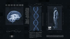 Medical futuristic interface. Shows the brain of the DNA and the human body. Investigation of the human genome and evolution. Maybe an artificial intelligence