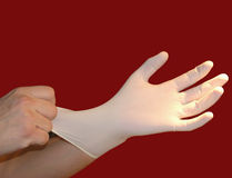 Medical gloves. Hands wearing white surgical gloves Stock Photo