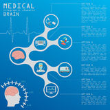 Medical and healthcare infographic, Brain  infographics Stock Images