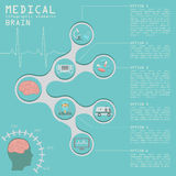 Medical and healthcare infographic, Brain  infographics Royalty Free Stock Photo
