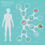 Medical and healthcare infographic, Cardiology infographics. Stock Photos