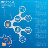 Medical and healthcare infographic, gastrointestinal tract infog Royalty Free Stock Photography