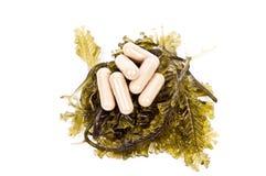 Medical herb Stock Photos