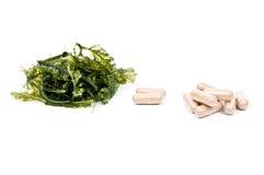 Medical herb Royalty Free Stock Photos